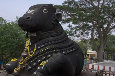 Nandi (Bull God) at Chamundi Hill