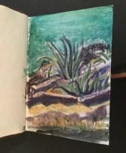Cacti, Kaminaki, Corfu, 2001