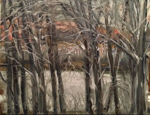 Through the Trees, Upton Lake (frozen), 5:30 pm, February 18th, 2019