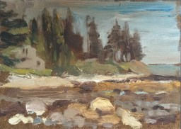 Coastline, Johns Bay, Pemaquid, 2015