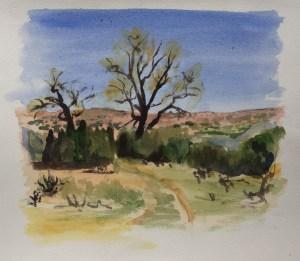 Trees, Santa Fe, 2010