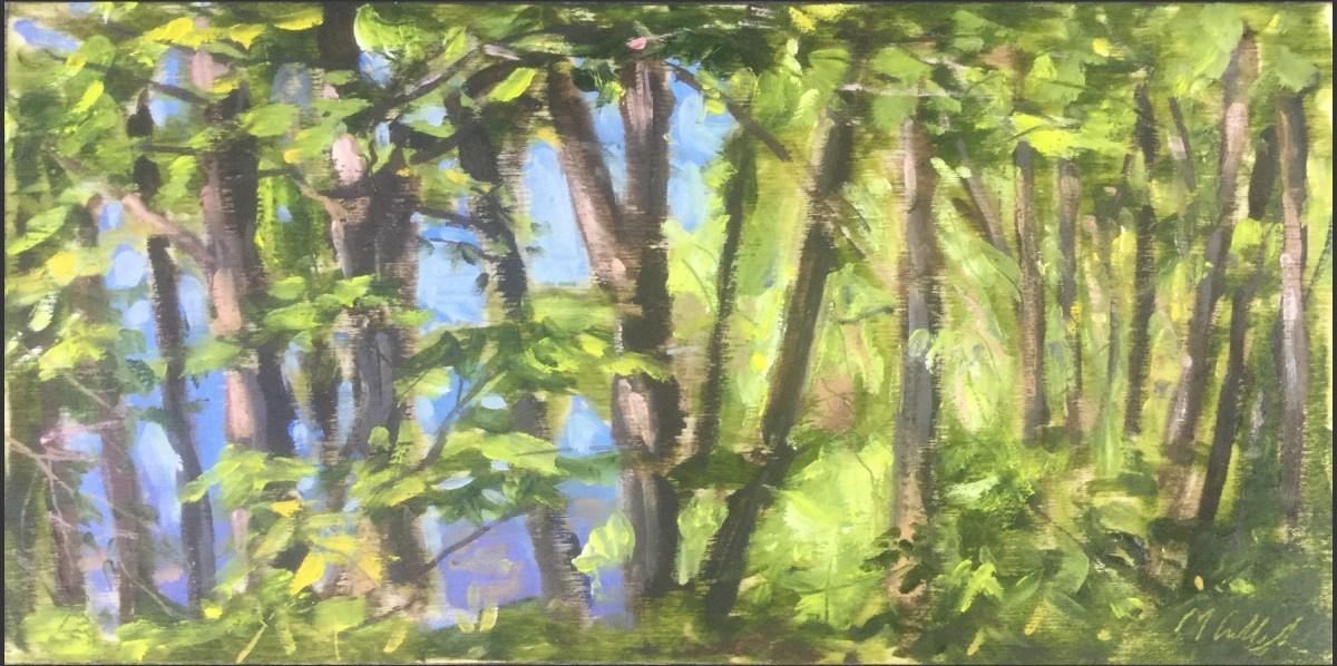 View Through Trees to Upton Lake, Clinton Corners, May 27th, 2019