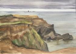 Otter Point, 2009