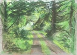 Driveway, Garden Cottage II, June, 2016