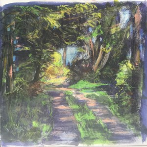 Driveway, Garden Cottage, Late Afternoon I, June, 2016