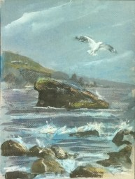 Havens Neck, Rocks and Seagull, 2013