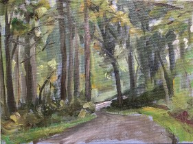 Wooded Path, Stanfordville, 9:00 am, September 16th, 2018
