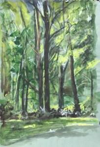 Trees, Clinton Corners, Spring, 2014