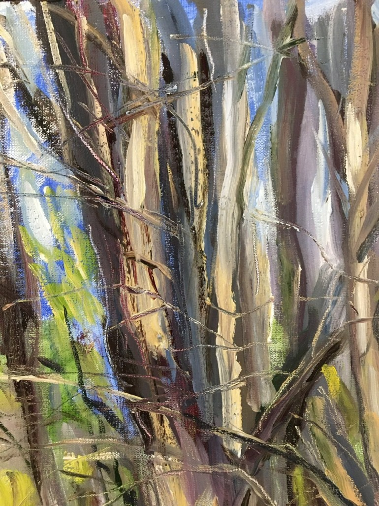 Detail - Trees, Clinton Corners, 2:30 pm,  April 4th, 2020