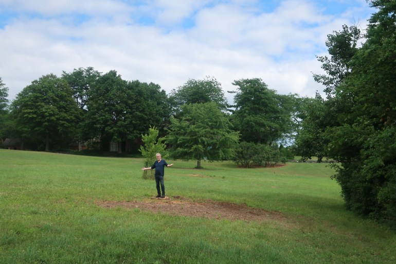 Standing where the copper beech tree once was, July 12th, 2020. PHOTO - Mark Powell