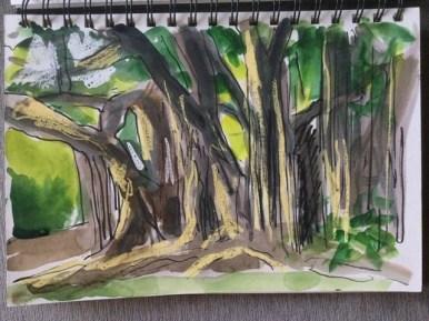 "Sketchbook, Brisbane (10 x 7""), Banyan Trees, City Botanic Gardens, Brisbane, Pen, wax crayon and watercolor, 2021"