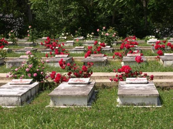 Elbasan Martyrs Cemetery - The tombs