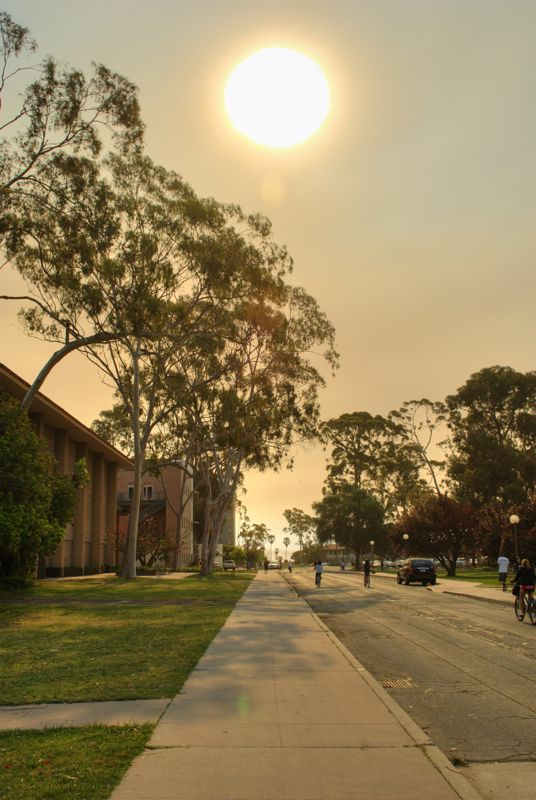 The morning sun through the smoke as ash fell on campus.