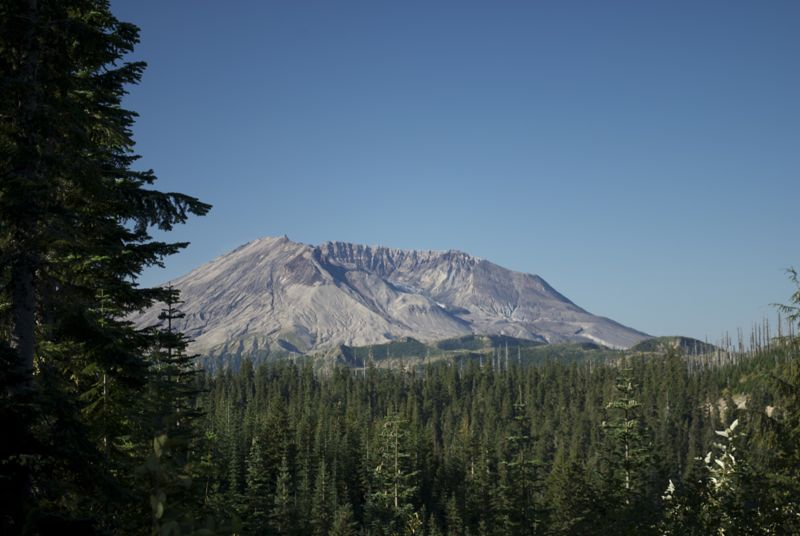 Mt. St. Helens from the edge of the sear zone.