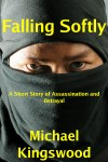 Falling Softly Cover
