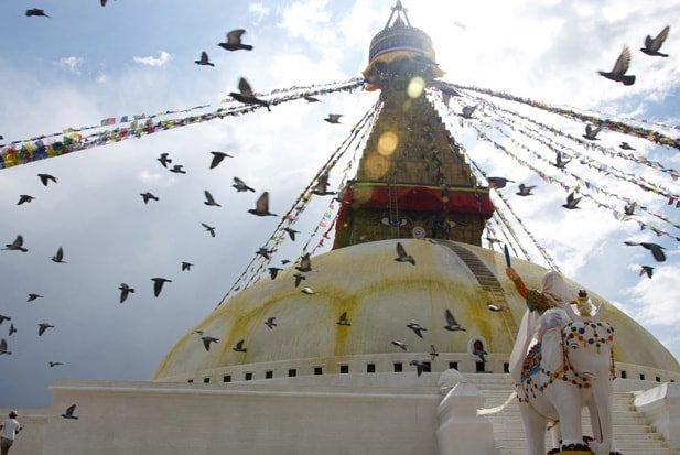 Boudhanath-Stupa-Birds-sm (1)