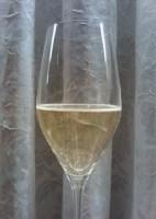Champagner Vve. Monsigny Premier Cru Brut