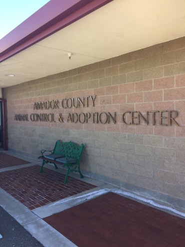 Amador County ACAC