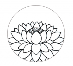 lotus_drawing