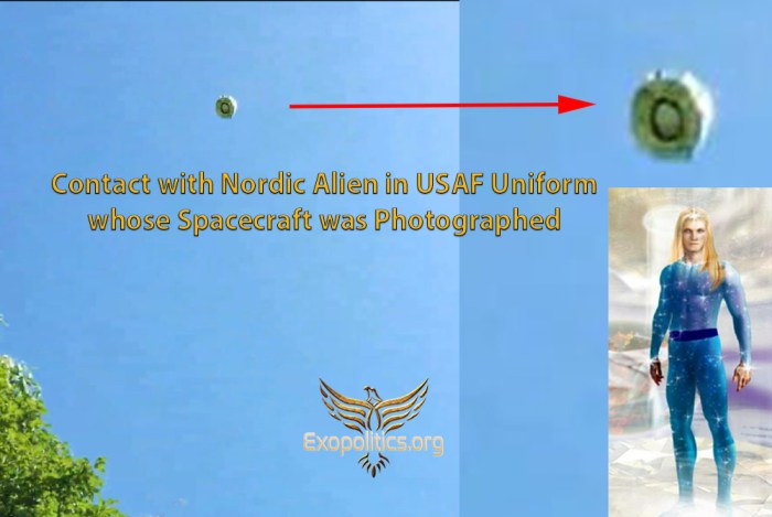 Contact with a Nordic wearing USAF uniform