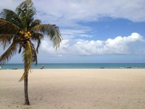 Aruba, January 2013