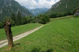 Alpe del Garda 08