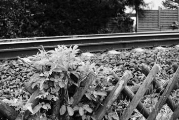 Bahn 06