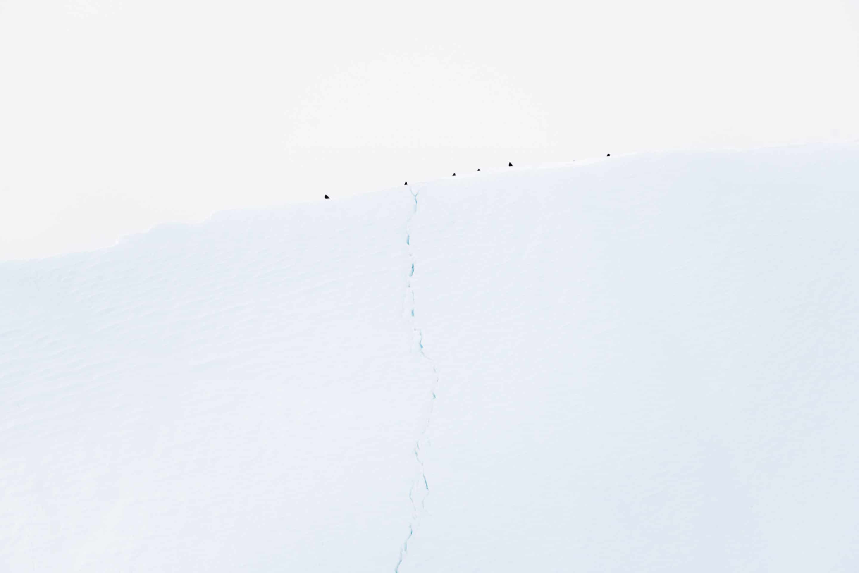 Minimalist fine art photographs of icebergs in Disko Bay, western Greenland by Michael Schauer