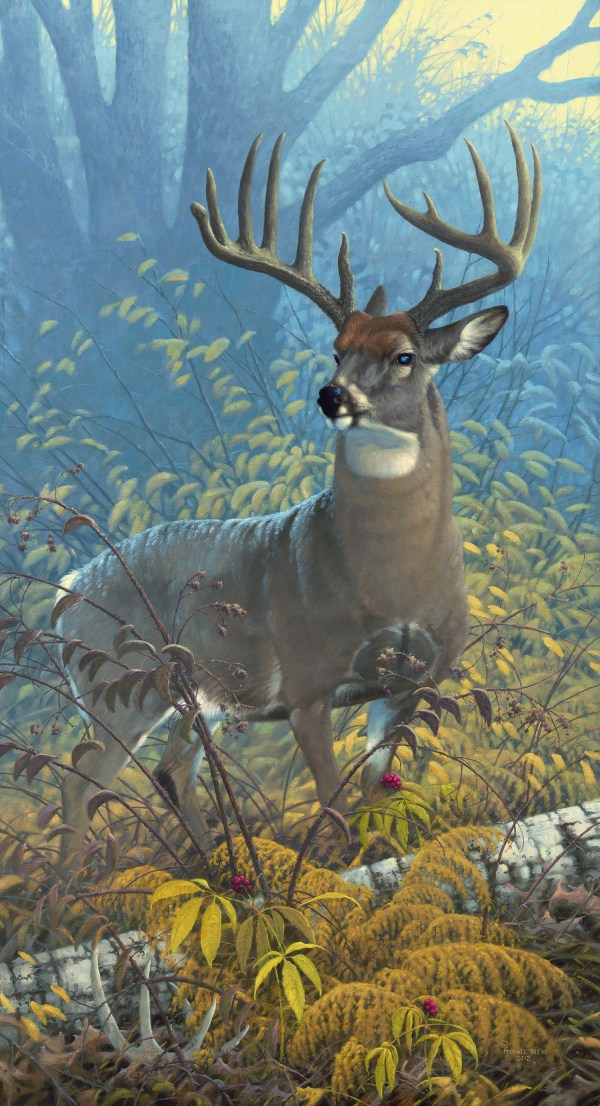 Whitetail Deer Hunting Paintings