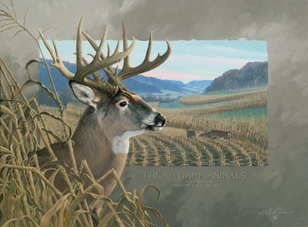 Paintings by Michael Sieve Deer