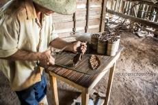 Rolling My Cuban Cigars