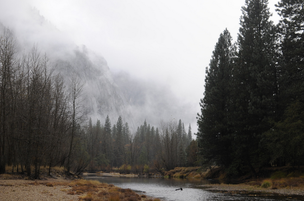October Fall Wallpaper Late Fall Rain In Yosemite Michaelsulock Com