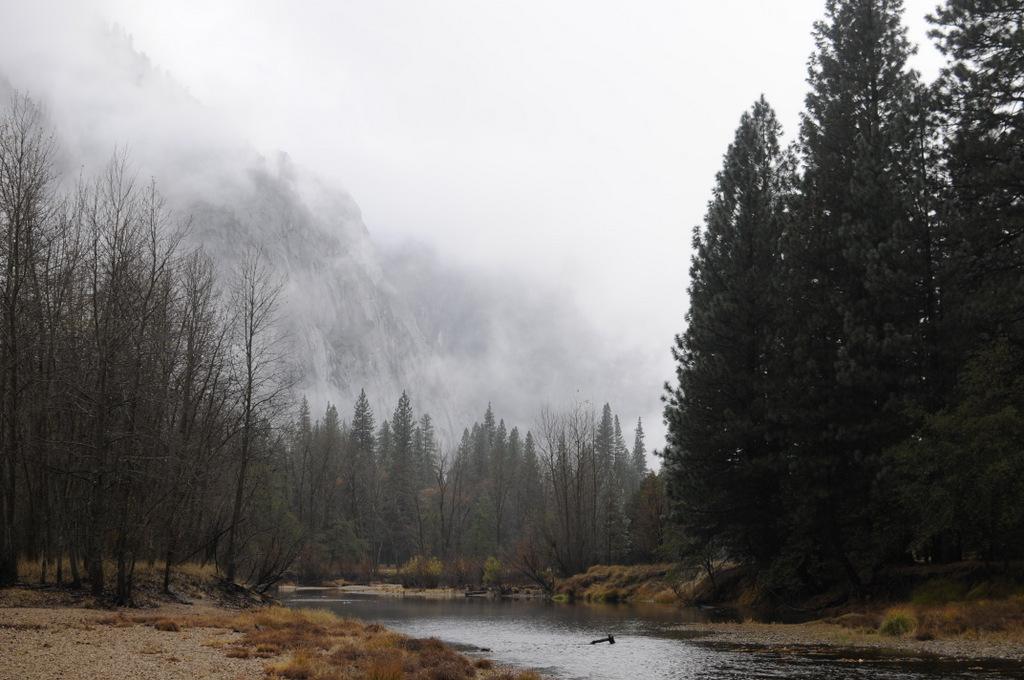 Fall Wallpaper 2017 Late Fall Rain In Yosemite Michaelsulock Com