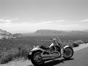 These Questions Determine if You Can Sue for Wrongful Death After a Motorcycle Crash