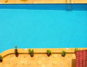Are Owners Liable For Pool Accident Injuries to Young Trespassers?
