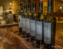 Lehmann Wines