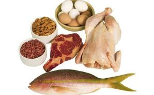 health-include-protein-each-meal-maintain-muscle-1400671574