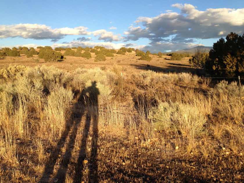 shadows, evening light, road to Taos