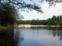 Baden und Schwimmen | SPREE-ATHEN