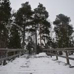 Escaleras nieve