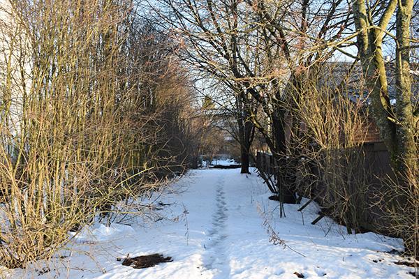 Paseo nieve