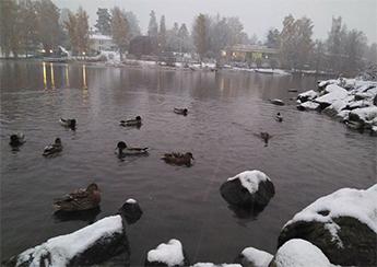 ¿Cuándo llega la primera nevada a Finlandia?