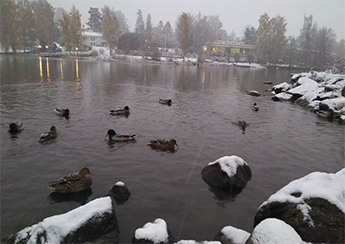 Primera nevada Helsinki
