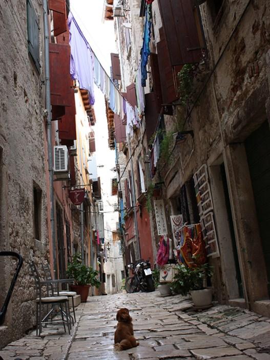 Street scene in Rovinj