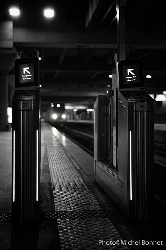 Arrivée du train en gare de Montaparnasse