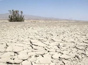 Le désert du Turkménistan