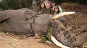 Les animaux en danger d'extinction sont les victimes de cette famille. Essayons de les faire mettre en prison!