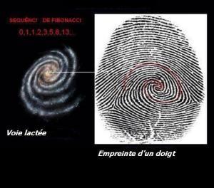 Une comparaison qui saute aux yeux