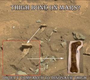 Facile <à comparer avec un os de dinosaure (à droite).