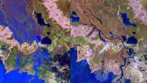 """L'intervention humaine est clairement le """"Wax lac Delta"""" de reconnaître dans l'État américain de la Louisiane. Une fois qu'un canal a été appliquée dans le golfe du Mexique, de plus en plus de sédiments  déposés vers la côte ."""